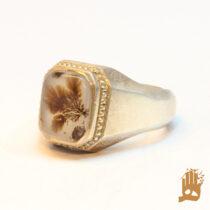 انگشتر فیلی صدفی نگین عقیق شجر